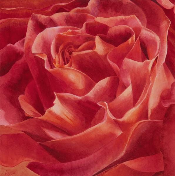 rose_6.jpg