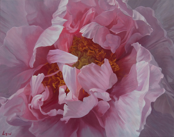 "Tree Peony 2 | 2011 | oil on linen| 32"" x 40"""
