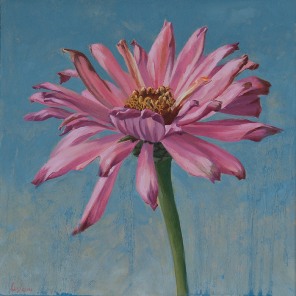 "Zinnia 2 | 2010 | oil on panel | 12"" x 12"""