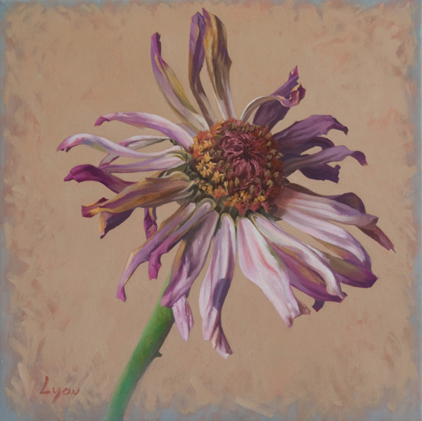 "Zinnia 5 | 2010 | oil on canvas | 20"" x 20"""
