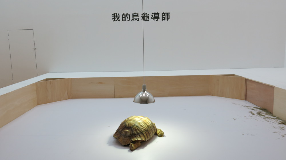 SHIMABUKU, My Teacher Tortoise, 2011–14, Sulcata tortoise, pen, lamp, title sticker and poster, dimensions variable. Photo: lucy