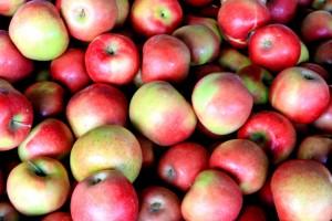 red_apples_212320.jpg