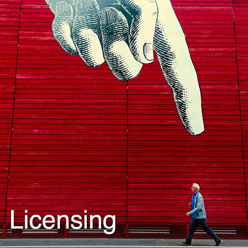Licensing 2.jpg