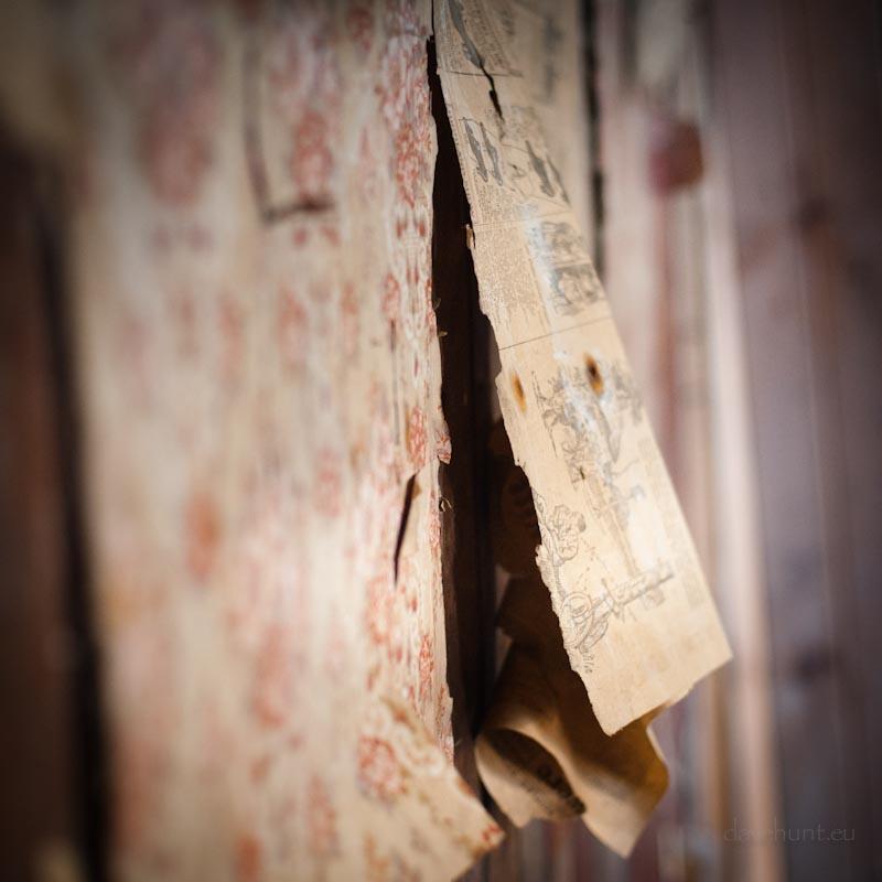 Resting Highlands - Peeling Wallpaper