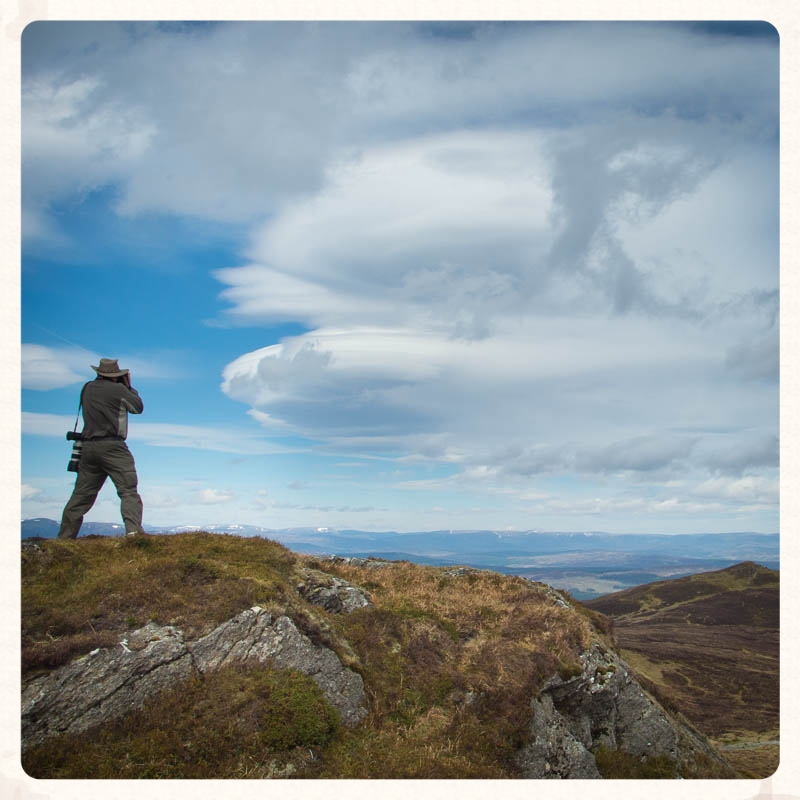 highland photography safaris : explore the landscape and wildlife in remote Highland Perthshire locations. details...