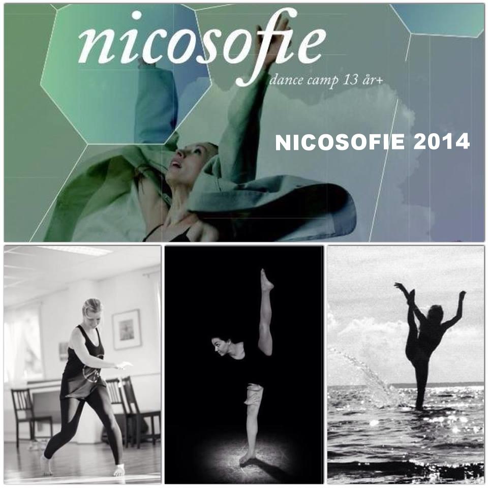 NICOSOFIE CREW 2014 2.jpg