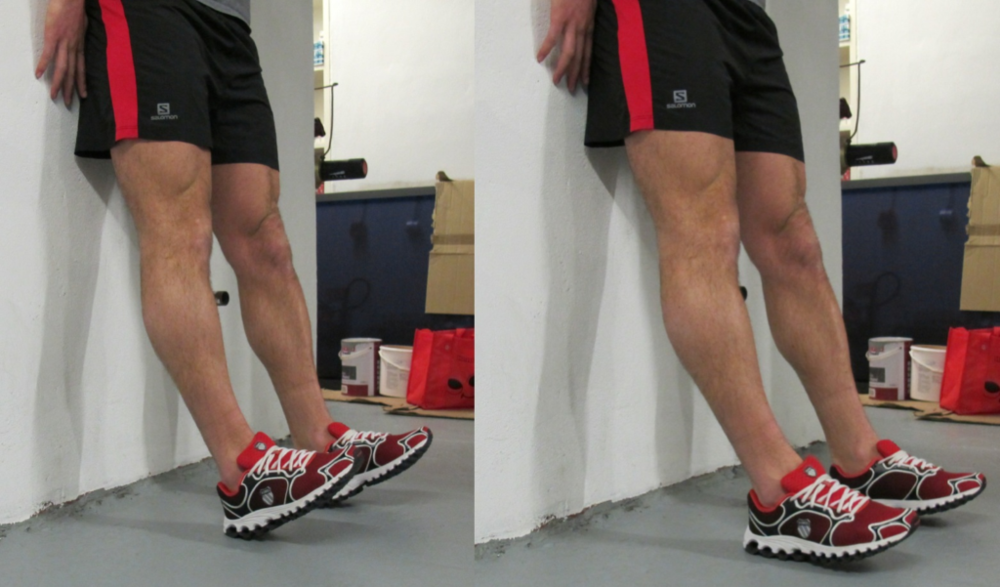 Fig 3: Double Shin-Raises and Pulses