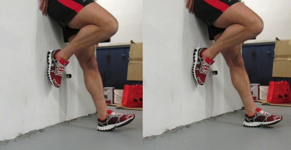 Fig 4: Single Shin-Raises