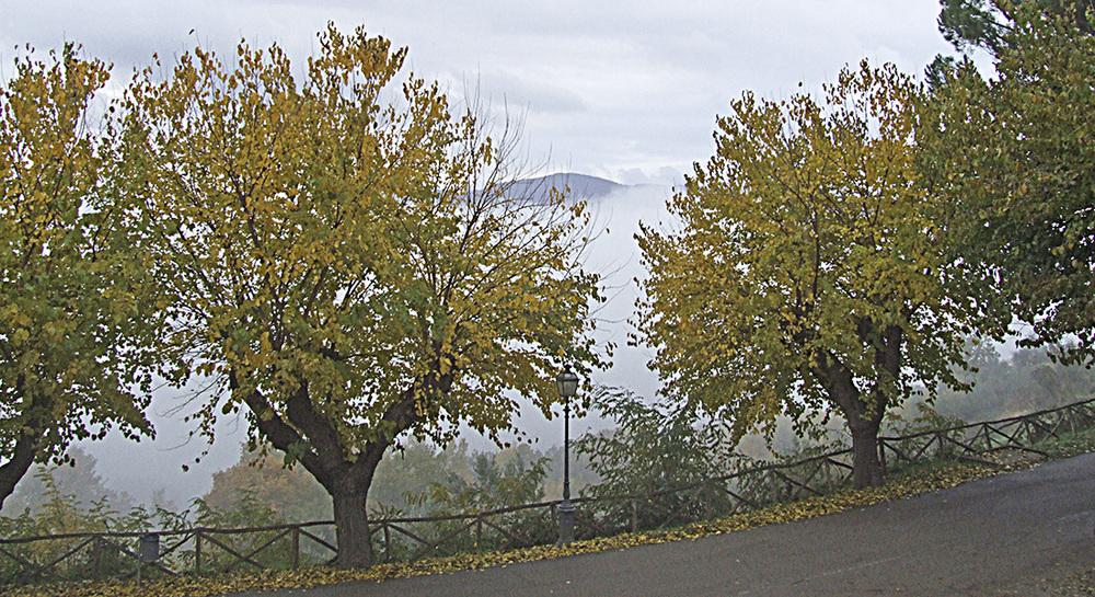 112 Citerna Autumn.jpg
