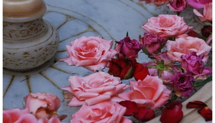 marrakesh roses.jpg