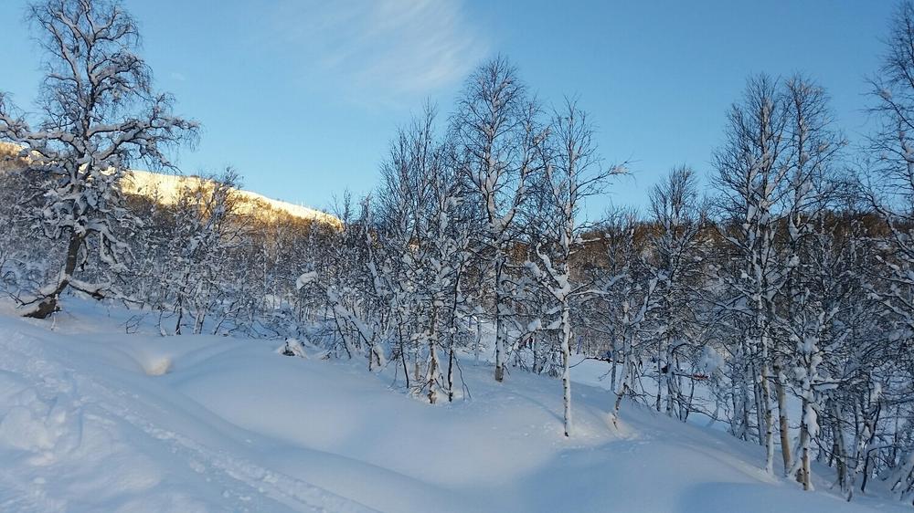 Ønsker for mer snø som tidligere!!!