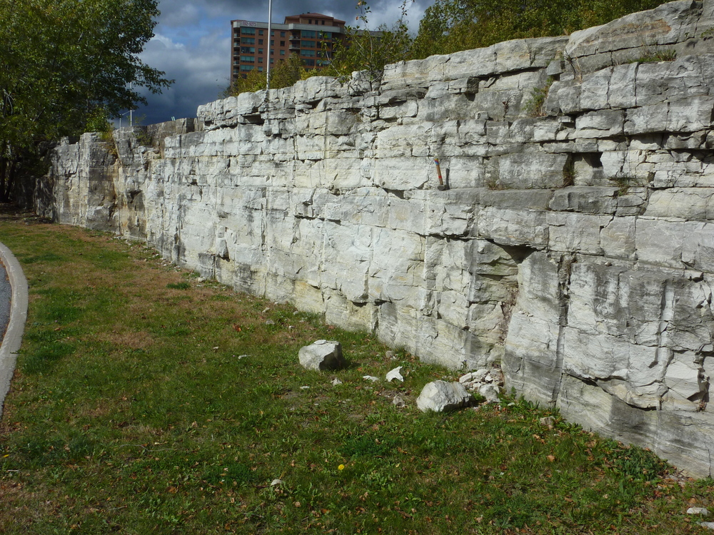 Nepean Sandstone outcrop behind Walmart Store, Centrum Plaza, Kanata.  Photo by Q. Gall