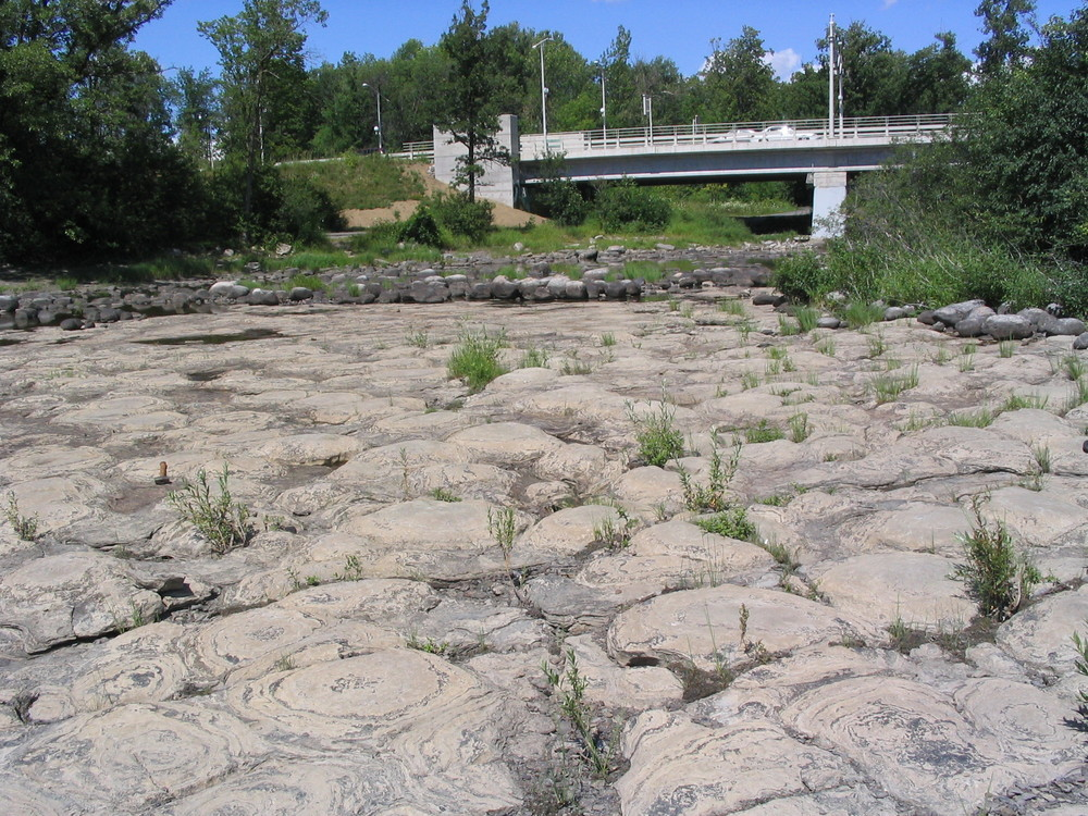 Overview of domal stromatolites upstream of Champlain Bridge, Que.  Photo by Q.Gall