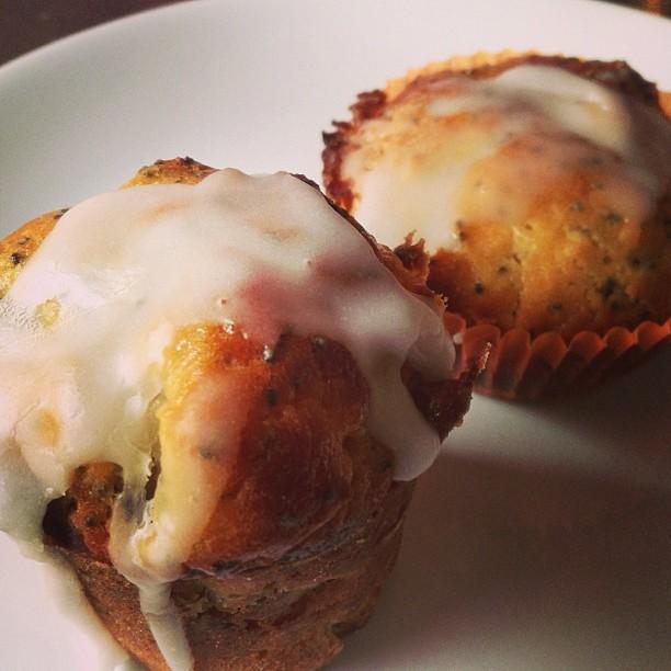 pai ìs muffins limone e semi di papavero