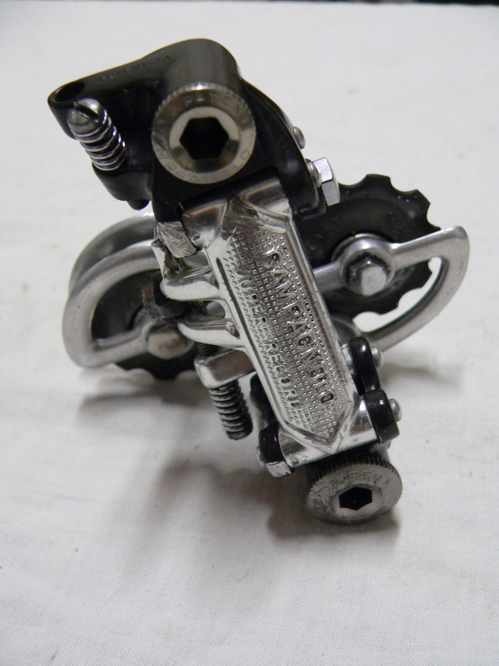 P1140745.JPG