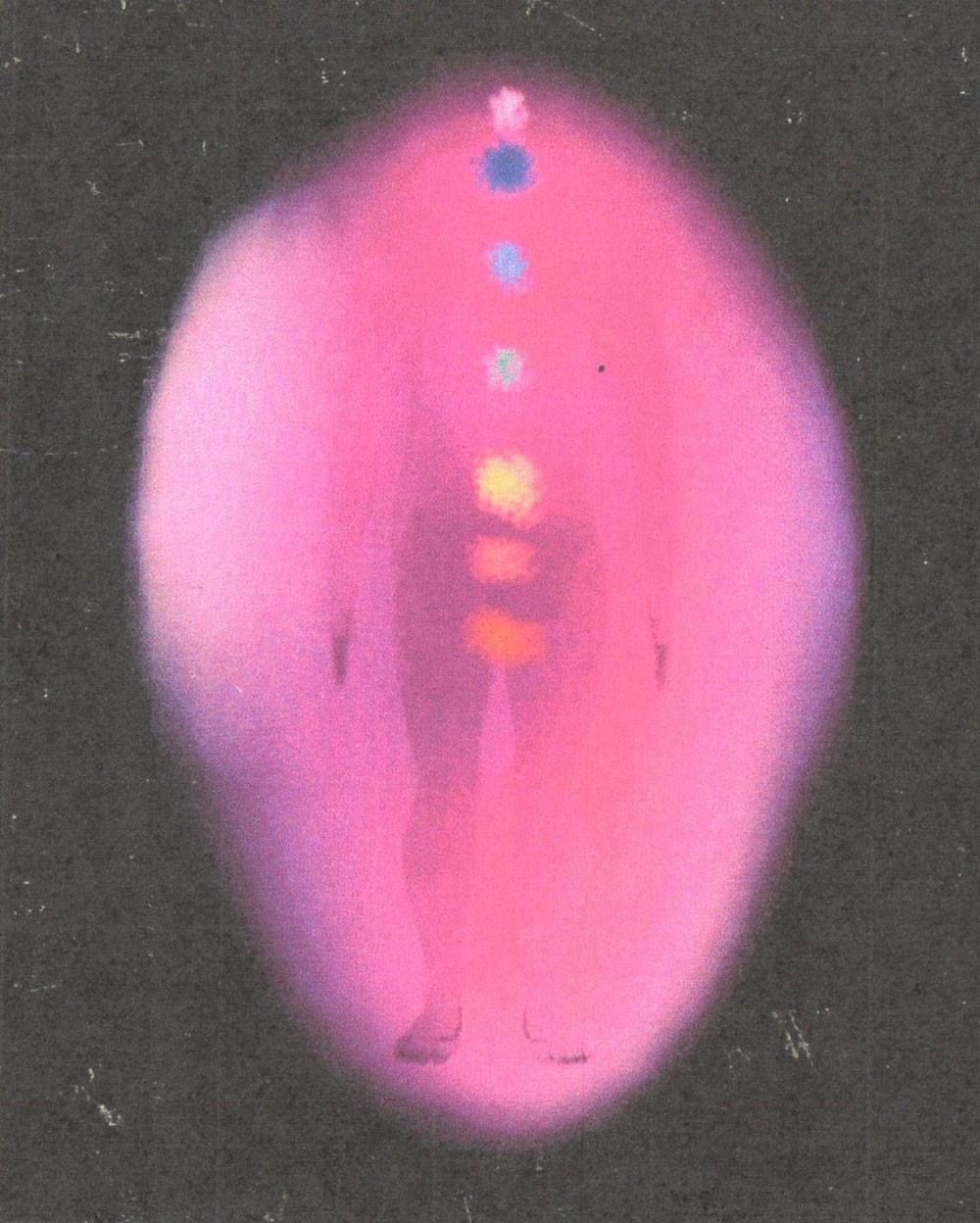 Aura photography performed on a client before a healing session with Victor