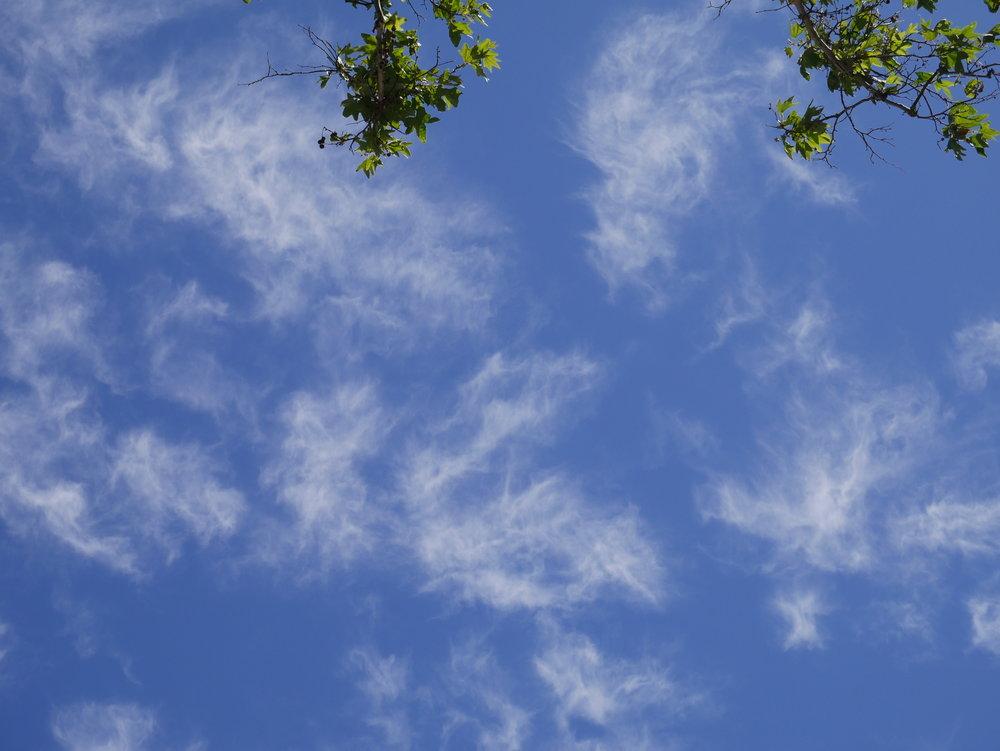 Angels in the sky 3.JPG