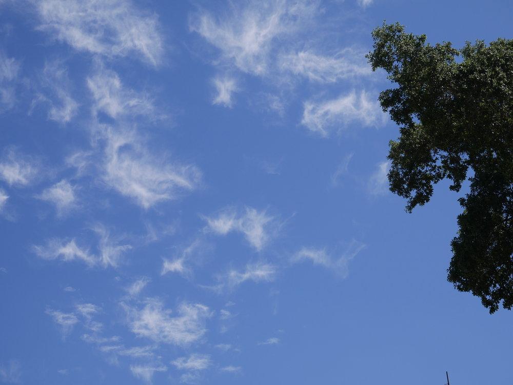 Angels in the sky 5.JPG