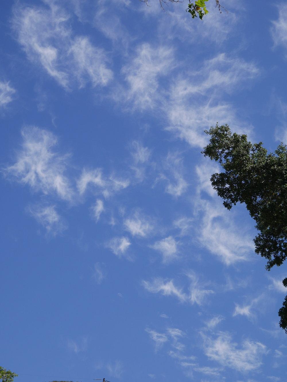 Angels in the sky 6.JPG