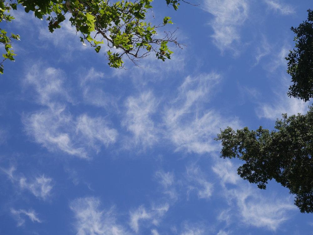 Angels in the sky.JPG