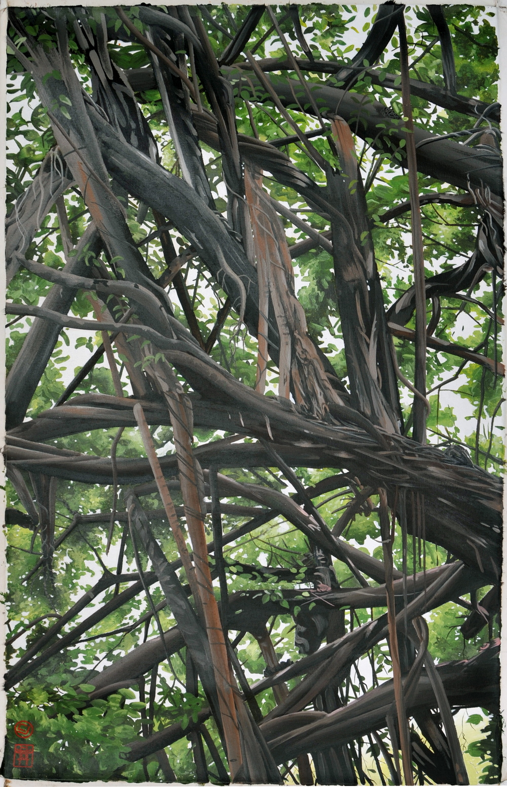 tree, Hanoi VN. (20x27)