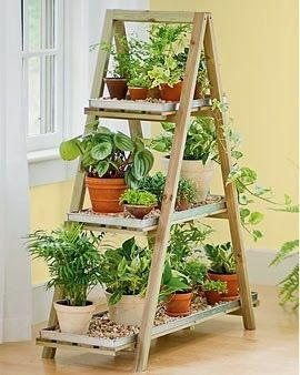rinconplantas.jpg