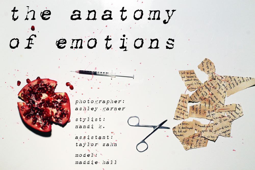 The Anatomy of Emotions