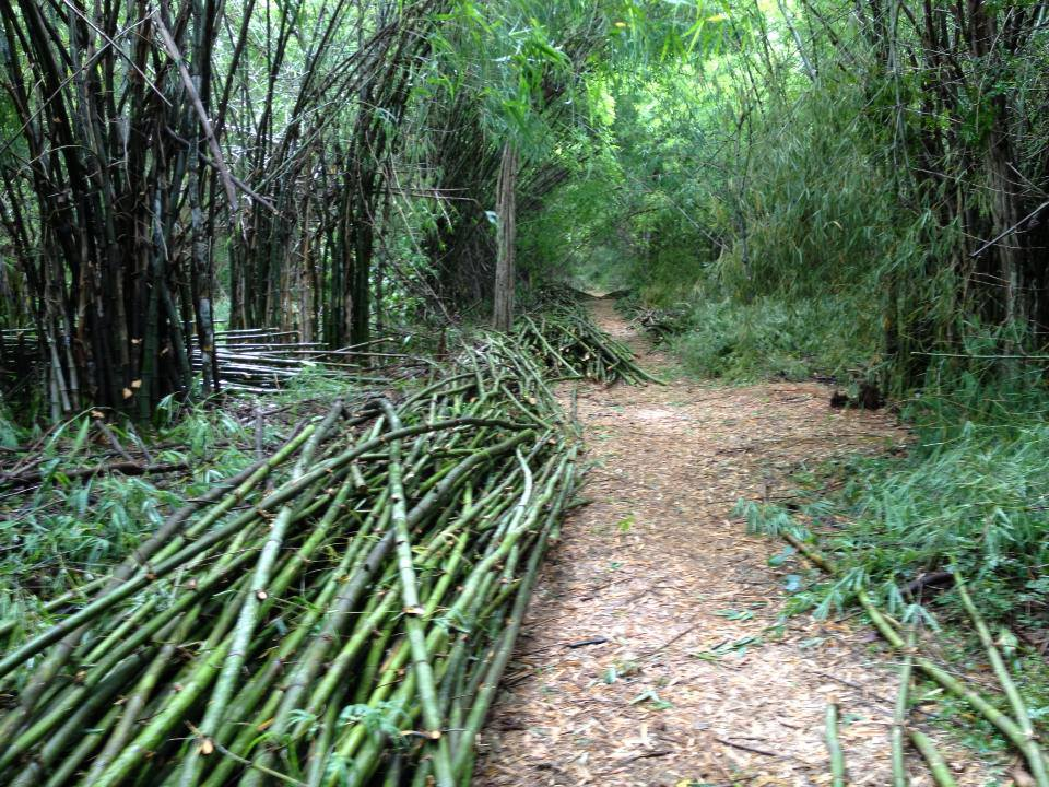 Iron Bamboo Poles