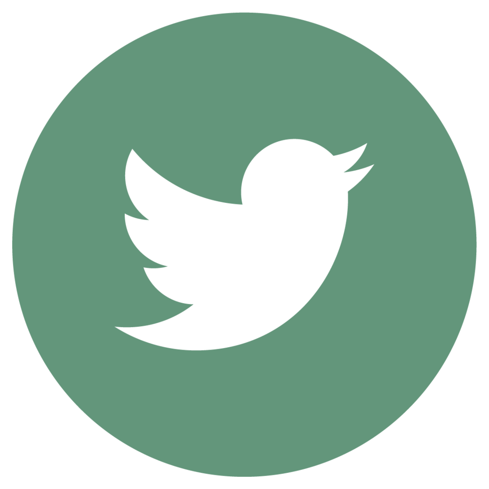 DMC-twitter.png