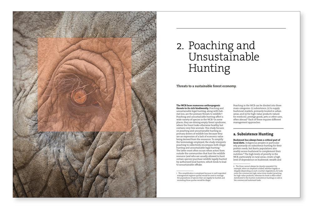 2. Poaching.jpg