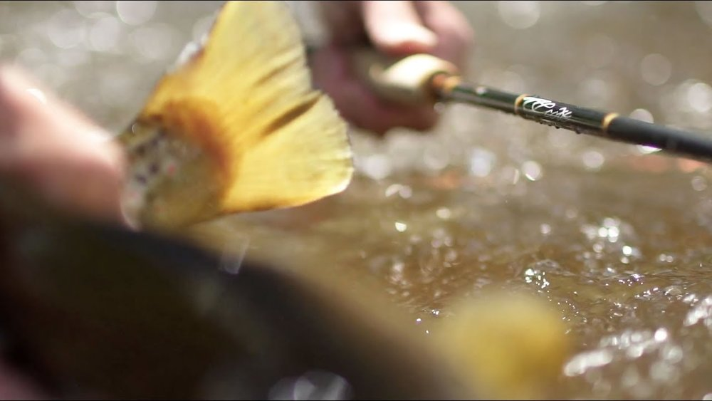 "<a href=""/featured/video-marketing/scott-fly-rods-g-series"">SCOTT FLY RODS<br><strong><center>Video Storytelling</strong></center></a>"