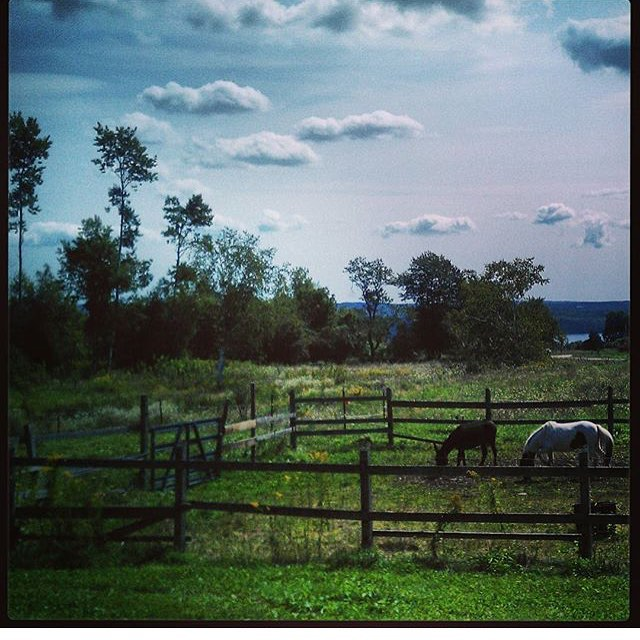 We are so excited to be leaving for @natprodexpo in Baltimore, but missing the farm already. Thanks @augustlilly70 for this beautiful shot. #expo2015 #Maine #farm