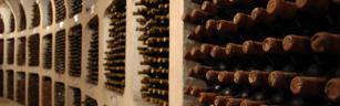 Sylvestre Wines.jpg