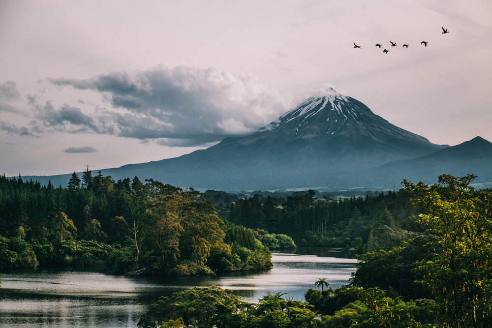 NZ-16.jpg
