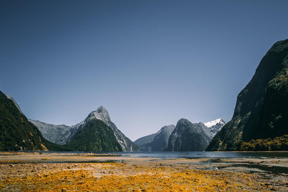NZ-66.jpg