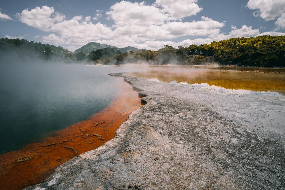 NZ-88.jpg