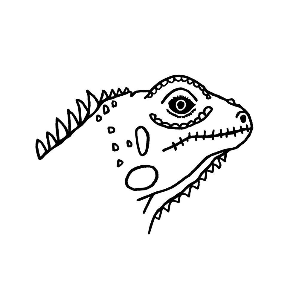 iguana_final.jpg