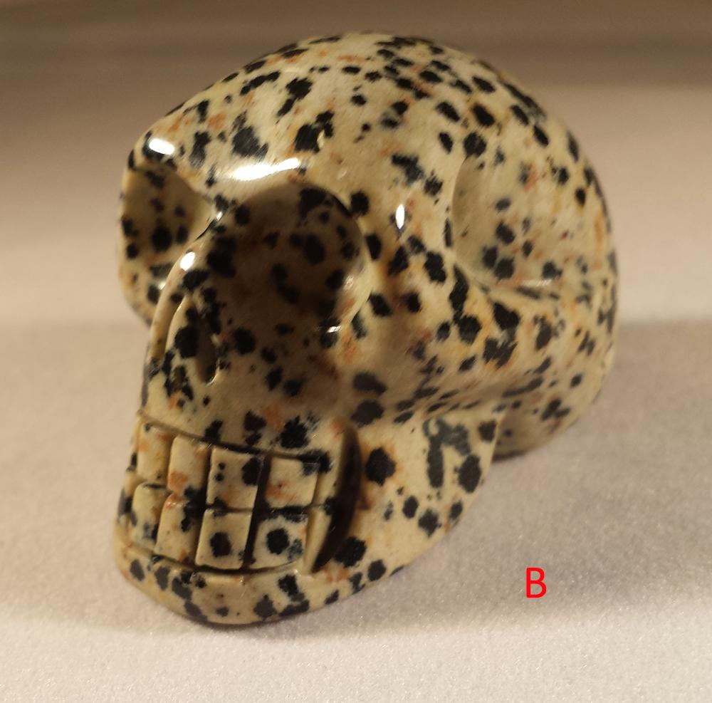 skullB1.jpg