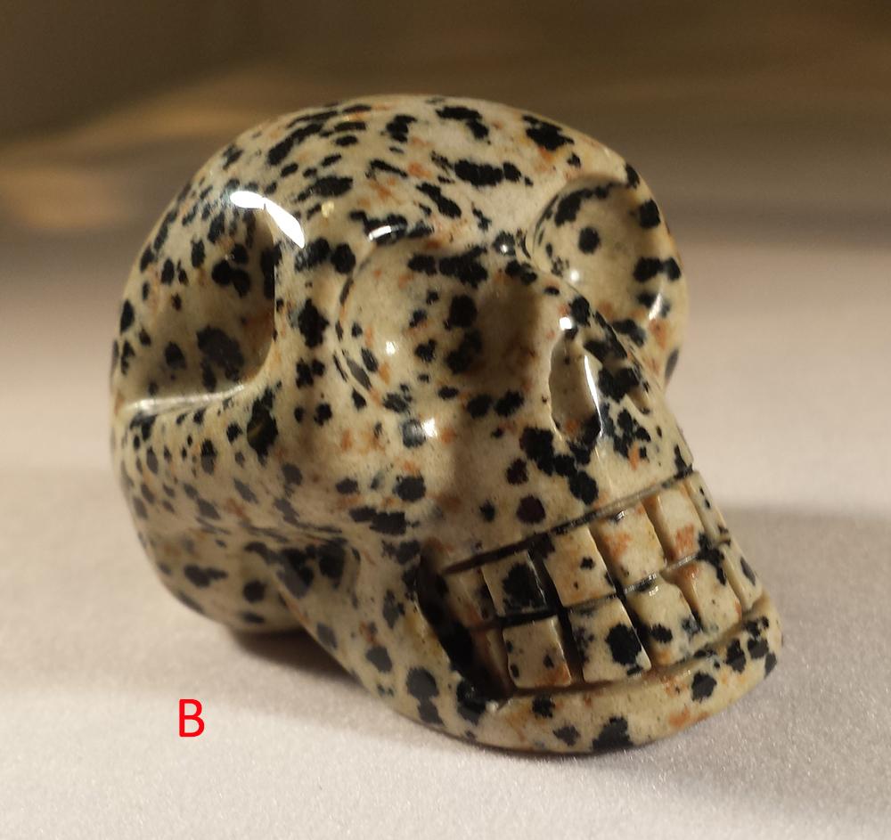 skullB2.jpg