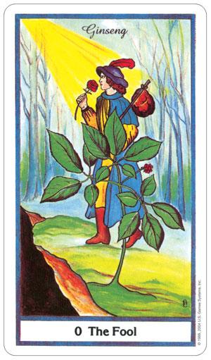 herbal 2.jpg
