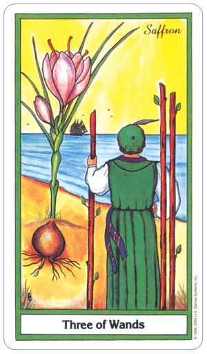 herbal 5.jpg