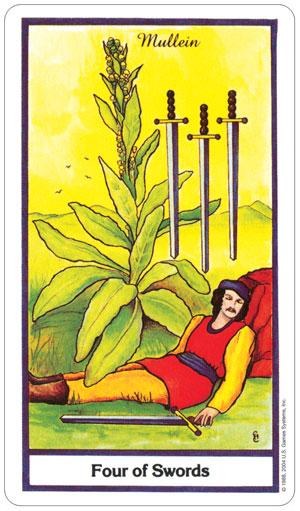 herbal 6.jpg