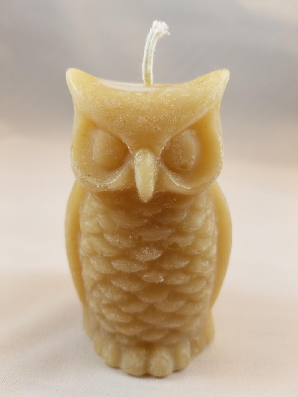bees owl.jpg
