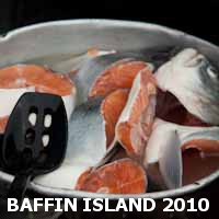 Baffin Island expedition 2010