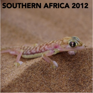 SOUTHERN AFRICA 2012