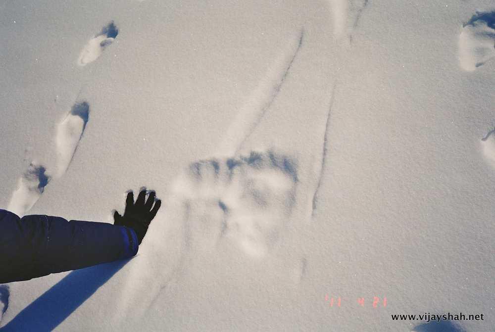 01-Photo28_8A.jpg