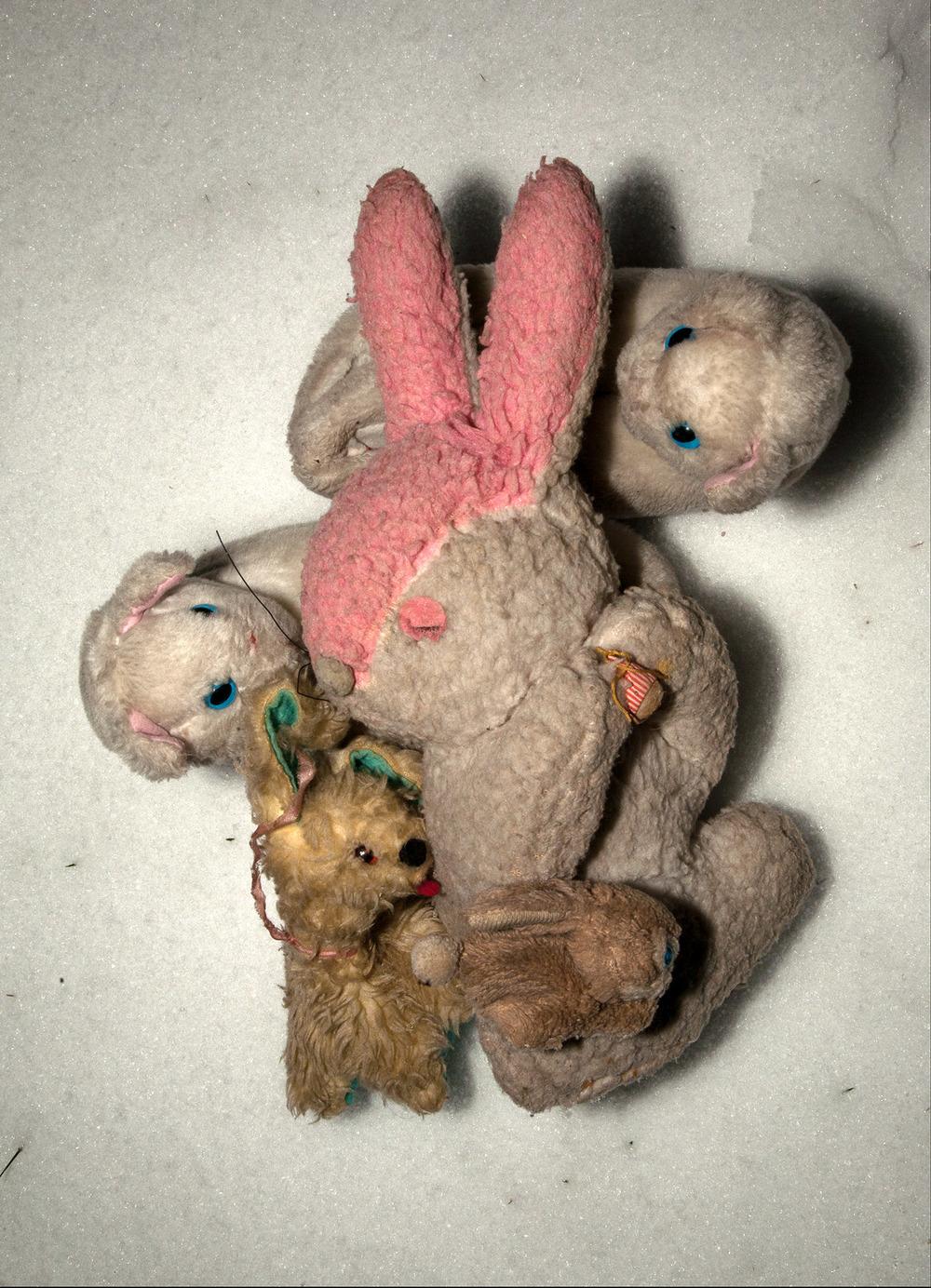 Stuffed Animal Love.jpg