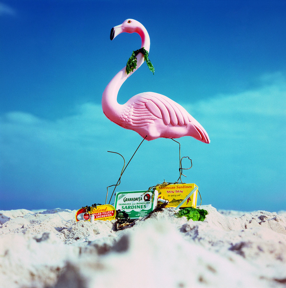 Flamingo_Best print version_March 2014.jpg