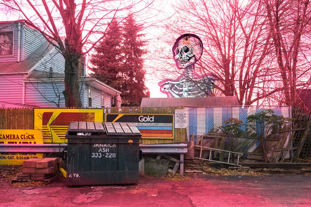 hayes_k_kodak-skeletons.jpg