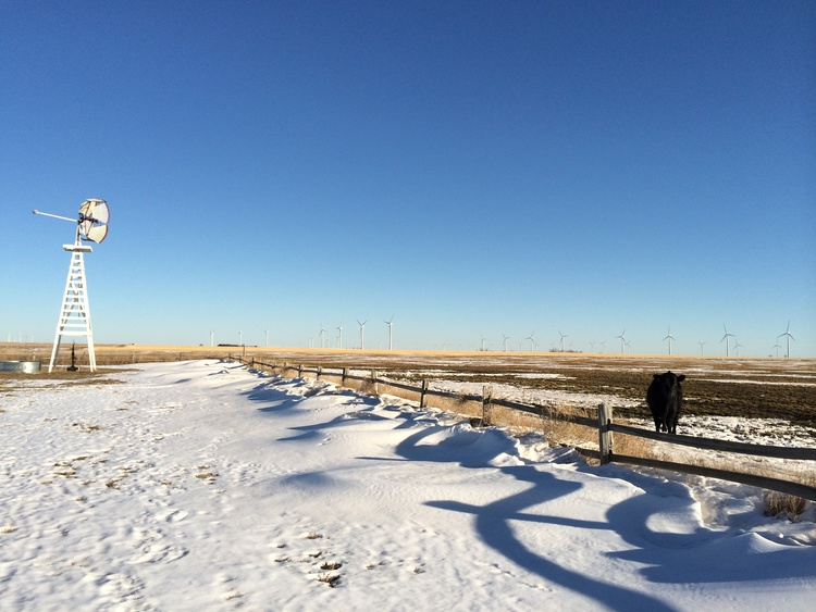 Greensburg Wind Farm is in the distance... along with gorgeous Kansas landscapes and winter colors.